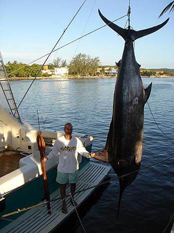 Beto Sicupira tem recordes de caça submarina. Na foto, abateu um marlin azul de mais de 300kg, em 2006.